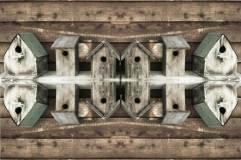 Birdhouses Two