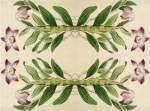 Necklace-stemmed Dendrobium