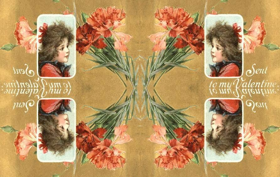 carnations sent