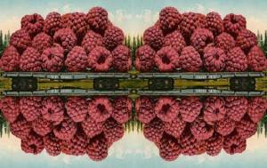 raspberry rails