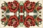 Rosey Poppies