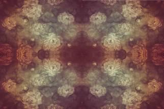 Rose Shadows Four